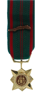 Civil Actions Medal