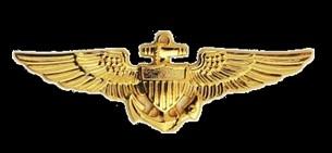 Aerospace Engineering Officer Wings