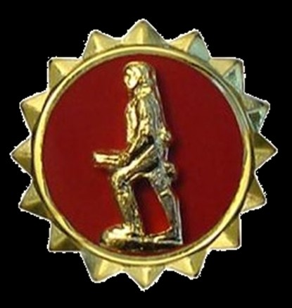 Army Lapel Button