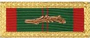 Civil Action Ribbon