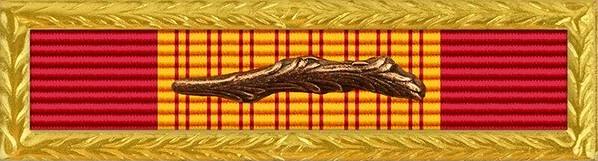 Republic of Vietnam Gallantry Cross Unit Citation with Palm - Air Force / Navy / Marine Corps / Coast Guard Frame