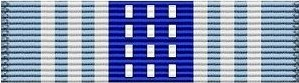 Air Force Overseas Ribbon Short